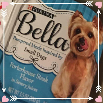 Photo of Purina® Bella Small Dog Food - Porterhouse Steak size: 3.5 Oz uploaded by Lauren T.