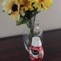 Renuzit Fresh Picked Collection Gel Air Freshener Apple & Cinnamon uploaded by Estefany N.