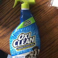 OxiClean™ Carpet & Area Rug Pet Stain & Odor Remover uploaded by Audra W.