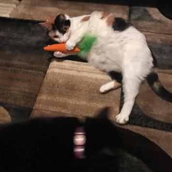 Cosmic Catnip 100% Catnip Filled Cat Toy 24 Karat uploaded by Andi B.