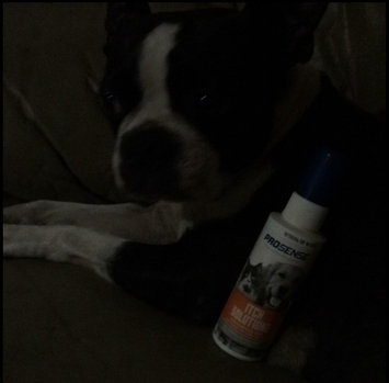 Photo of Pro-Sense ProSense Itch Relief Dog Hydrocortisone Spray 4 oz uploaded by Tina H.