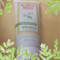 Burt's Bees Sensitive Facial Cleanser uploaded by Massielle Nathalie M.