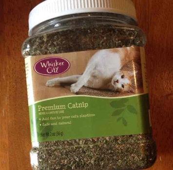 Photo of Whisker CityA Premium Catnip uploaded by galaxy f.