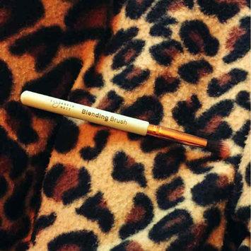 Photo of Elizabeth Mott Blending Brush uploaded by Destiny P.