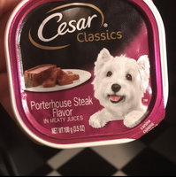 Cesar Sunrise Smoked Bacon and Egg Breakfast Dog Food 3.5 oz uploaded by Brittany B.