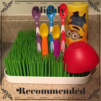 Boon Grass Countertop Drying Rack uploaded by Tiara W.