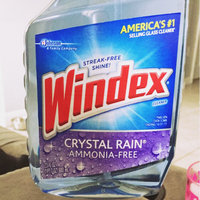 Windex 23-fl oz Glass Cleaner 679593 uploaded by Vanessa G.