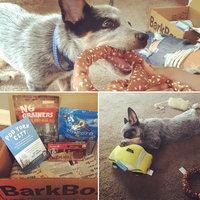 BarkBox uploaded by Marlena W.