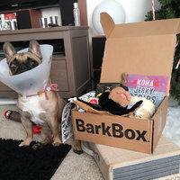 BarkBox uploaded by Alanna T.