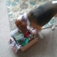 BarkBox uploaded by Shannon H.