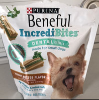 Purina Beneful IncrediBites Dental Minis Peanut Butter Flavor Dog Treats 7 oz. Pouch uploaded by Diana D.