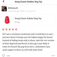 Kong Classic Rubber Dog Toy uploaded by Brittany B.