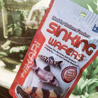 Hikari Sales Hikari Tropical Sinking Wafers for Catfish, Loaches and Bottom Feeders uploaded by Paige W.