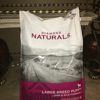 Diamond Pet Foods Diamond Naturals Lg Breed Puppy Dry Dog Food 40lb uploaded by Lacey A.