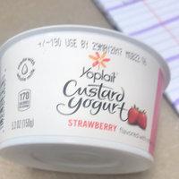 Yoplait® Strawberry Custard Yogurt uploaded by Marjorie S.