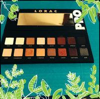 LORAC Pro Palette  uploaded by michele k.
