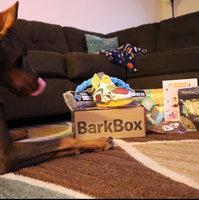 BarkBox uploaded by Deasia B.