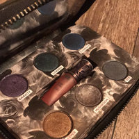 Urban Decay The Dangerous Palette uploaded by Erica A.