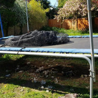 Skywalker Trampolines 15' Rectangle Trampoline with Enclosure - Blue uploaded by Intan H.