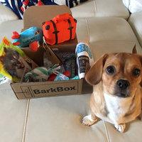 BarkBox uploaded by Angela H.