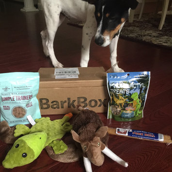 BarkBox uploaded by Irene H.