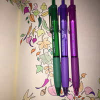 Paper Mate® Profile Ballpoint Retractable Pens  uploaded by Cleo T.