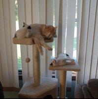 PureBites Freeze Dried Cat Treat uploaded by Heidi C.