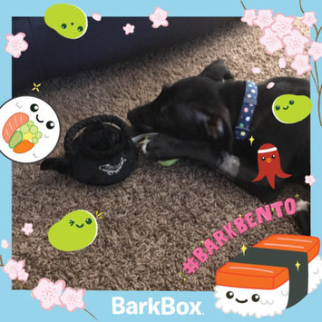 BarkBox uploaded by Jessica F.