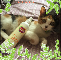 Leaps & Bounds Natural Catnip Spray Mist, 8 oz. uploaded by Riley A.
