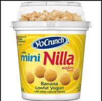 YoCrunch® Banana with Nilla Wafers Pieces Lowfat Yogurt 6 oz. Cup uploaded by Erica O.