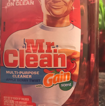 Mr Clean with Apple Berry Twist Scent Multi Surface Liquid 40 Fl Oz uploaded by Cherie P.