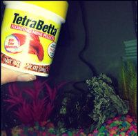 Tetra 77256 TetraBetta PLUS Mini Pellets, 1.2-Ounce, 85-ml uploaded by Sarah T.