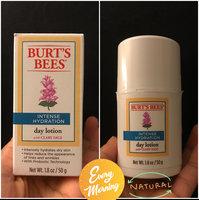 Burt's Bees Intense Hydration uploaded by Nancy S.