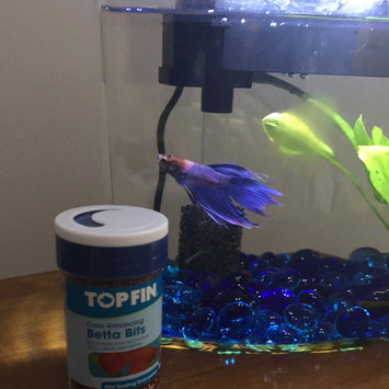 Top Fin® Betta Bits Color Enhancing Pellets Fish Food size: 1 Oz uploaded by Maritza H.