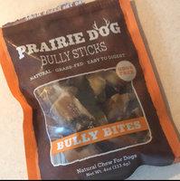 Prairie Dog 6