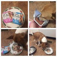 Purina® Bella Small Dog Food - Porterhouse Steak size: 3.5 Oz uploaded by Rebecca B.