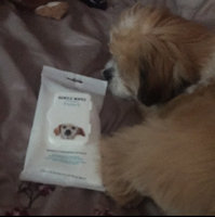 Well & Good Gentle Puppy Grooming Wipes, Pack of 24 wipes uploaded by elaina s.