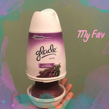 Photo of Glade Apple Cinnamon Solid Air Freshener uploaded by Joseline M.