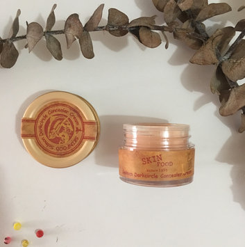 Photo of Skin Food Salmon Dark Circle Concealer Cream #2 Made in Korea by Skinfood uploaded by Juliet C.