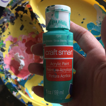 Photo of Acrylic Paint, 2 oz in Ocean Breeze by Craft Smart uploaded by Stacey M.