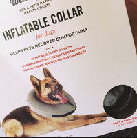 Well & Good Inflatable Collar for Dogs and Cats, Large/ X-Large, Large/X-Large uploaded by Lorren A.