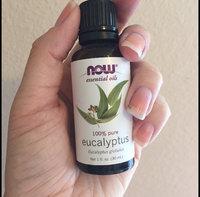 Eucalyptus Radiata Oil Now Foods 1 fl oz Liquid uploaded by Katherine V.