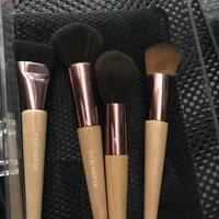 Sonia Kashuk® Cosmetic Brush Set uploaded by Ashley M.