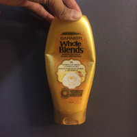 Garnier Whole Blends Moroccan Argan and Camellia Oils Extracts Illuminating Conditioner uploaded by Katie B.