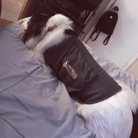 Thundershirt Dog Jacket for Anxiety in Blue uploaded by LisaHouseCat J.