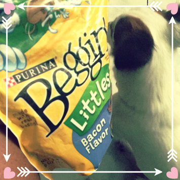 Photo of Beggin'® Littles Original With Bacon Dog Treats uploaded by Danielle J.