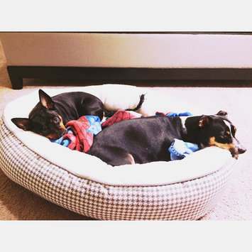 Photo of Boots & Barkley Houndstooth Oval Pet Bed - XL uploaded by Vane G.