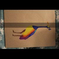 Prismacolor Premier Colored Pencils, 24 Assorted Colors/set uploaded by Ashley N.