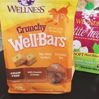 Wellpet Llc Wellness WellBars Peanuts & Honey 20oz Box Dog Treats uploaded by Gia J.