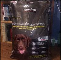 Eukanuba® Adult Maintenance Dog Food 5 lb. Bag uploaded by Katie C.